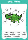 Illustration of crocodile vocabulary part of body,Write the cor