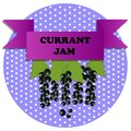 stock image of  Illustration of currant jam stickers
