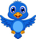 Illustration of cute bluebird cartoon flying Stock Photo
