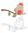 Illustration of Cute Bullfinch. Cartoon Character Coloring Book