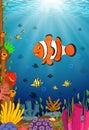 Cute clown fish cartoon in the sea