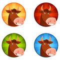 Illustration of a cute happy cow cartoon smiling with colorful circle background Royalty Free Stock Image