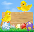 Illustration cute little yellow cartoon easter chicks wooden sign Stock Photos