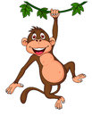 Illustration cute monkey hanging Royalty Free Stock Images