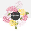 Illustration delicate chrysanthemum flower spring greeting card summer composition Stock Photos
