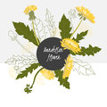 Illustration delicate dandelion flower spring greeting card summer composition spring Royalty Free Stock Photos