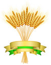 Illustration of ears of wheat Royalty Free Stock Photography