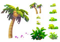Illustration: Fantastic Tropical Beach Elements / Objects Set 1. Coconut tree, grass, mushroom, etc. Royalty Free Stock Photo