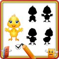 Find the correct shadow. Cute baby chicken waving. Education Game for Children