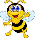 Illustration funny bee cartoon waving Stock Photos