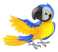 Illustration happy blue yellow cartoon macaw parrot pointing his wing Royalty Free Stock Photography