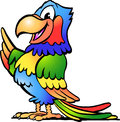 Illustration of an happy colorful parrot hand drawn vector Royalty Free Stock Photography