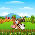 Happy farm animals at hills