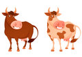 Illustration of a happy smiling cow cute cartoon in two color variations Royalty Free Stock Photo