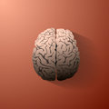 An illustration of the human brain Royalty Free Stock Photo