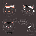 Illustration with the image of four cats and text Who do you choose on a gray background. Vector