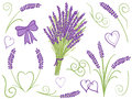 Illustration of lavender design elements Stock Image