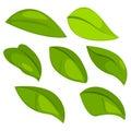 Illustration Leaf Object Set