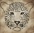 Illustration of a leopard Royalty Free Stock Image