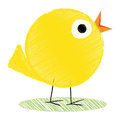 Illustration little yellow chick isolated white background Royalty Free Stock Photography