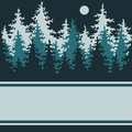 Illustration of a night of coniferous forest with a place for your text Stock Photos