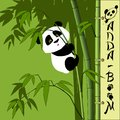 Illustration. The panda bear cub climbed onto the bamboo.