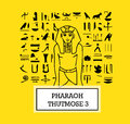 Illustration of Pharaoh Thutmose III Royalty Free Stock Photo