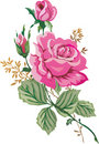 Illustration with pink roses Stock Photo