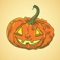 Illustration of pumpkin Royalty Free Stock Photo