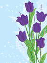 Illustration of purple tulip flowers on blue and starry backgrounds this eps file info version illustrator eps document inches Royalty Free Stock Photo
