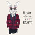 Illustration of rabbit hipster dressed up in jacket, pants and sweater. Vector illustration Royalty Free Stock Photo