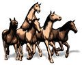 Illustration of racing horses five galloping Stock Image
