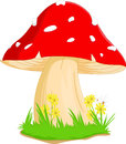 Illustration of red mushroom with grass Royalty Free Stock Photo