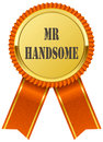 Illustration of a ribbon with mr handsome printed on it on white