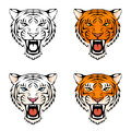 Illustration of a roaring tiger head Stock Photos