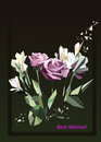 Illustration of roses. Greeting card