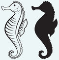 Illustration seahorse isolated on blue background Royalty Free Stock Photos