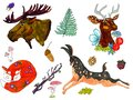 Illustration of a set of animals. Elk, deer, fox, pine cone, fern, hare, acorns, berry, leaves on a white background Royalty Free Stock Photo