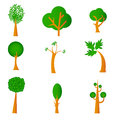 Illustration set trees isolated white Royalty Free Stock Image