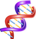 Illustration of Shiny DNA Double Helix Royalty Free Stock Photo