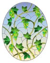 Stained glass illustration with  a bunches of green grapes and leaves on blue background, oval image Royalty Free Stock Photo