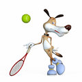 Illustration on a subject a dog the tennis player before the championship Stock Photos