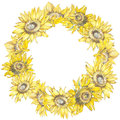 Illustration of a Sunflowers. Wreath in watercolor style. Beautiful round. Decor for invitations, greeting cards