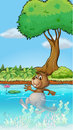 Illustration of a swimming beaver Royalty Free Stock Images