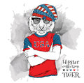 Illustration of tiger hipster dressed up in the glasses and in the t-shirt with print of USA flag. Vector illustration.