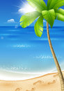 Illustration tropical beach palm trees sun Royalty Free Stock Image