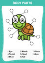 Illustration of turtle vocabulary part of body
