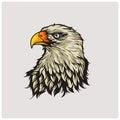 illustration vector of head eagle