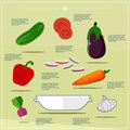 Illustration vegetable salad ingredients, elements on flat design