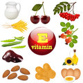 Illustration vitamin e the origin of plant foods Royalty Free Stock Photos